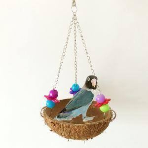 Natürliche Kokosnuss Schaukel für Vögel Papageien
