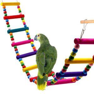 Bunte Vogel Leiter Spielzeug aus Holz 12-Step für Papagei Training
