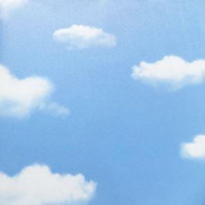 (EU Lager) Tapete Venus Himmel und Wolken Wandpapier