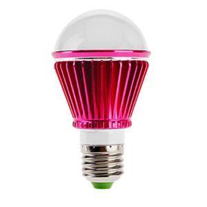 (EU Lager)E27 led Kugellampe 3*1W 240lm 180° SMD 5050 AC85-265V Rot
