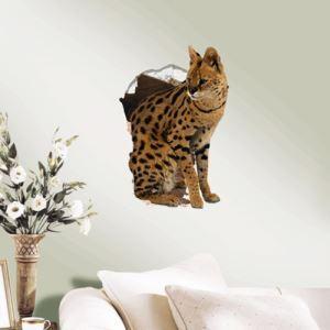 (EU Lager)3D Wandtattoo Katze PVC Fototapete