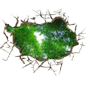(EU Lager)3D Wandtattoo Wald PVC Fototapete