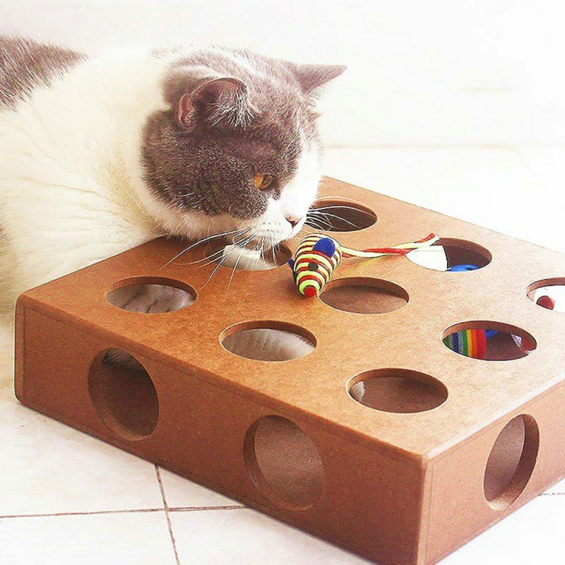 Katzenspielzeug Intelligenzspielzeug Für Katzen Aus Holz