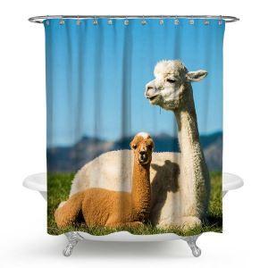 3D Duschvorhang Alpaka Wasserdicht und Anti-Schimmel